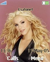 Shakira W550  theme