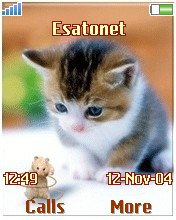 Cat and Mouse W700  theme